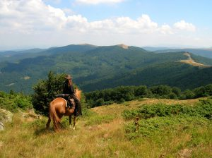 Un voyage à cheval